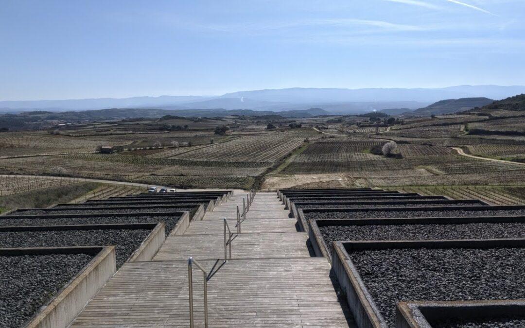 Moderne und traditionelle Weine: ein Spaziergang durch die besten spanischen Weinkeller