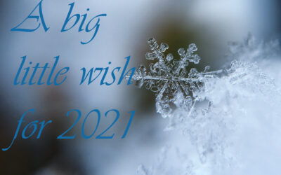 A big little wish for 2021