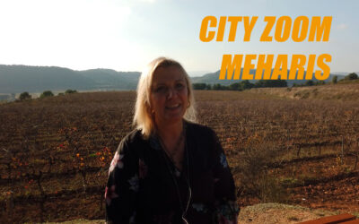Visiting City Zoom Meharis – an interview in the vineyards